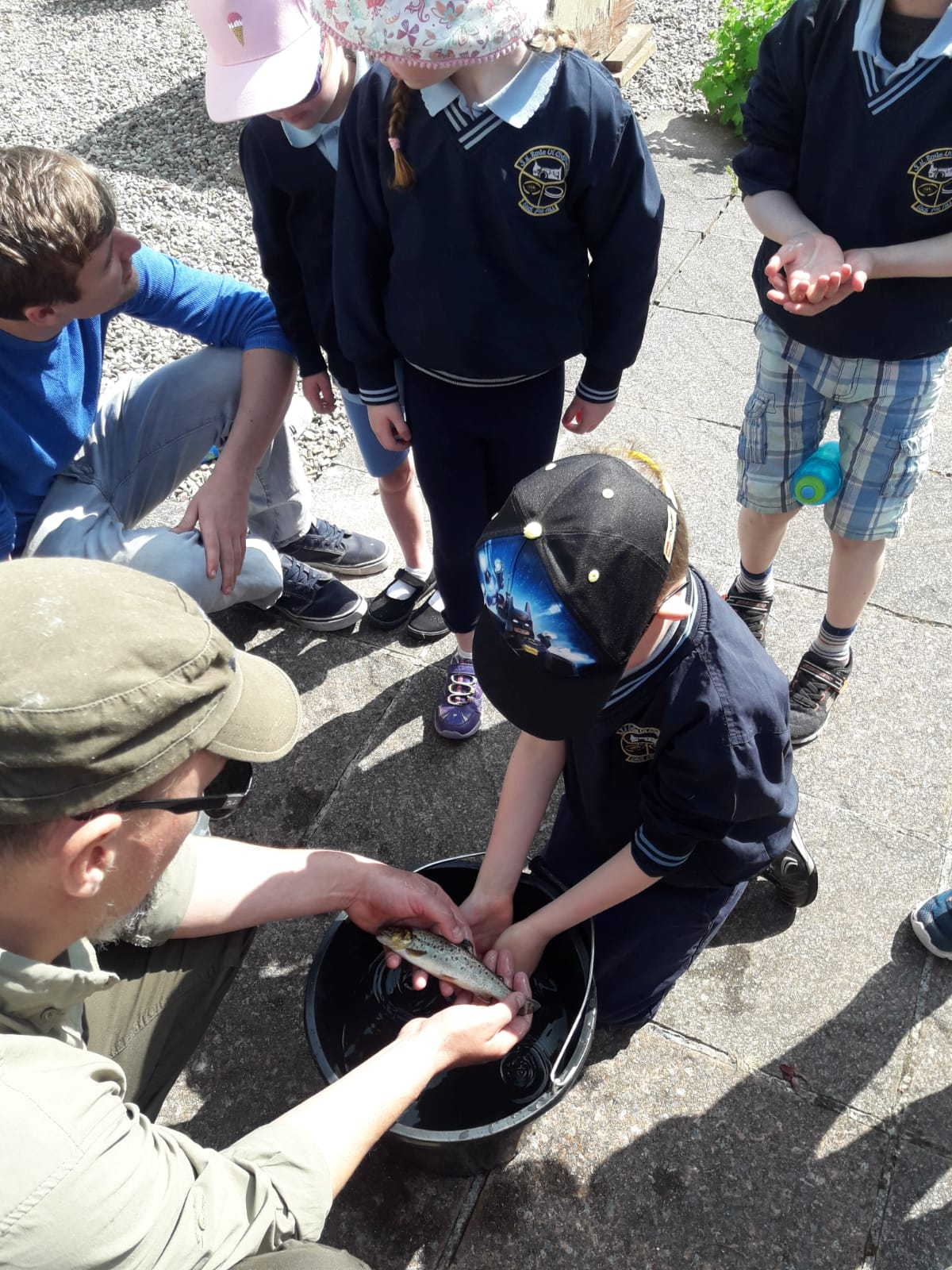 Test : Ballycar NS Something Fishy Schools Visit