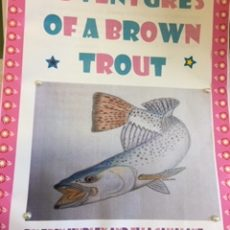 Adventures of a brown trout…and other freshwater creatures.