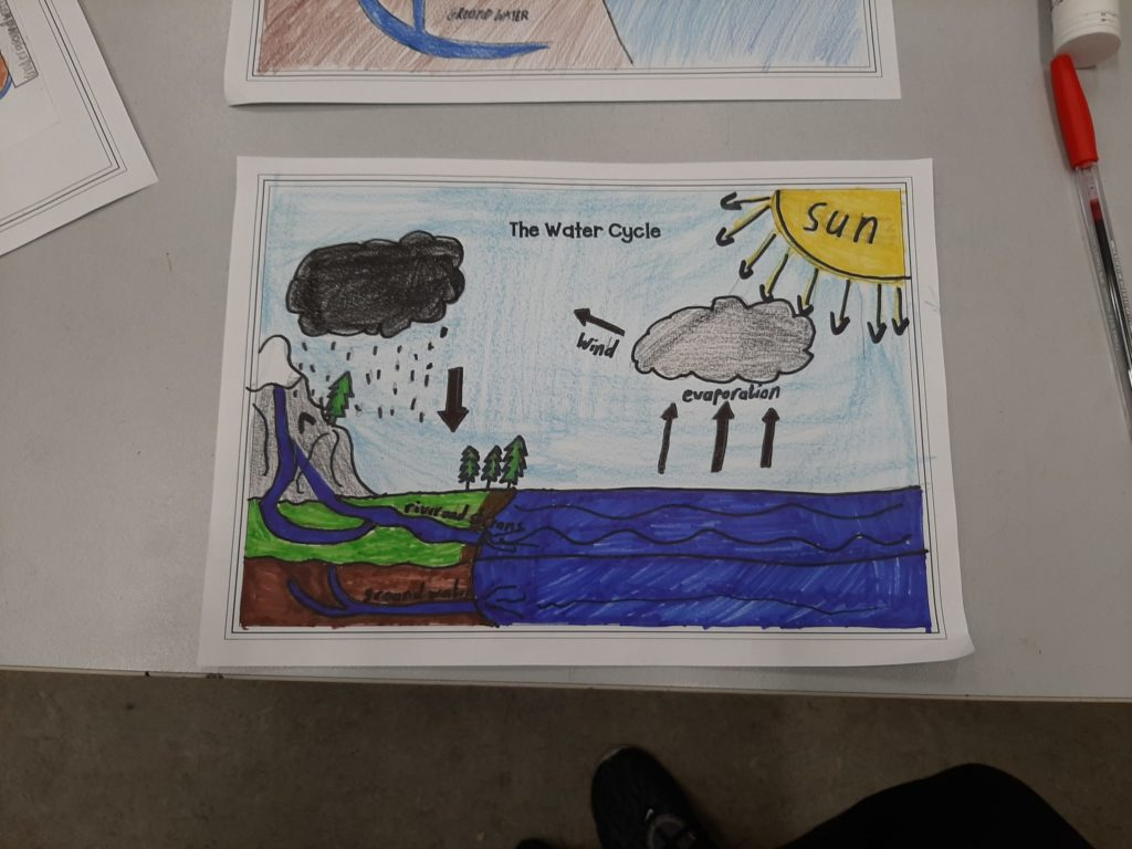 We drew a diagram of the Water cycle to demonstrate our understanding of the three states of water and how water is recycled.