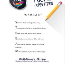 Poetry competition – 5th Class winner Orlaith Timmons